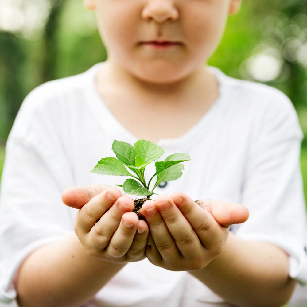 10 bonnes habitudes écolo à adopter au quotidien