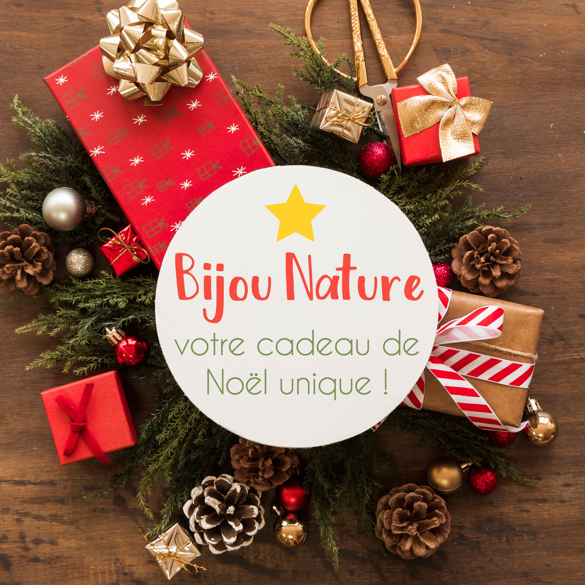 Bijou Fleur : Offrez un cadeau Nature unique pour Noël !