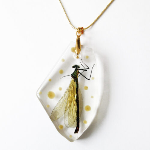 pendentif libellule en résine et inclusion d'insecte, argent et fleurs bijoux nature original cadeau femme tendance nature fleur porte-bonheur doré à l'or fin 24k